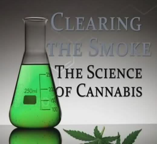 Clearing the Smoke – The Science of Cannabis (2011)